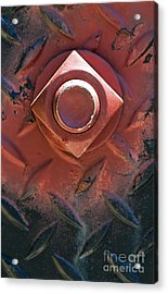 In Red On Black Acrylic Print by Dan Holm