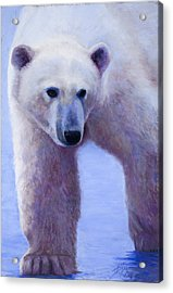 In Search Of Acrylic Print by Billie Colson