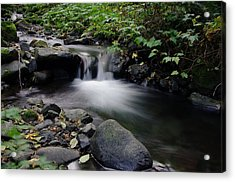 In Slow Pools Where Serenity Abounds Acrylic Print by Jeff Swan