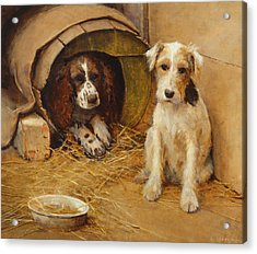 In The Dog House Acrylic Print by Samuel Fulton
