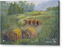 In The Field Acrylic Print by Mohamed Hirji