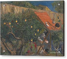 In The Garden Acrylic Print by Celestial Images