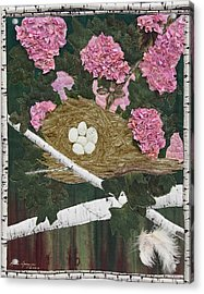In The Pink Acrylic Print by Anita Jacques