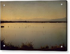 In These Peaceful Moments Acrylic Print by Laurie Search