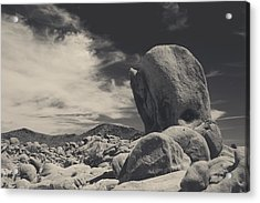 In This Strange Land Acrylic Print by Laurie Search