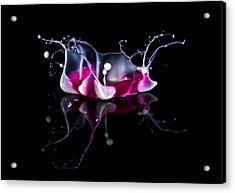 In White Pink And Red  Acrylic Print by Jaroslaw Blaminsky