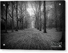 In Your Darkest Hour Acrylic Print by Jacky Gerritsen