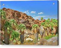 Indian Canyons View In Palm Springs Acrylic Print by Ben and Raisa Gertsberg