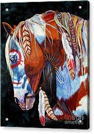 Indian War Pony Acrylic Print by Amanda Hukill
