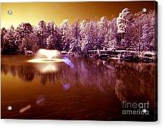 Infrared Study #242 Acrylic Print by Floyd Menezes