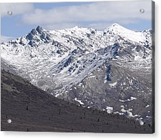 Inside Denali National Park 2 Acrylic Print by Tara Lynn