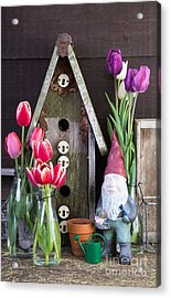 Inside The Garden Shed Acrylic Print by Edward Fielding