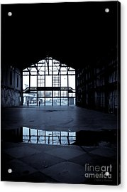 Insideout Acrylic Print by Colleen Kammerer