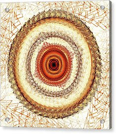 Internal Target Acrylic Print by Anastasiya Malakhova