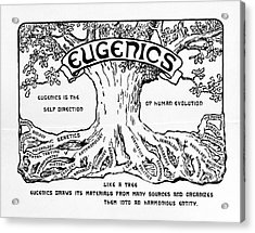 International Eugenics Logo Acrylic Print by American Philosophical Society