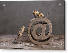 Internet Acrylic Print by Nailia Schwarz