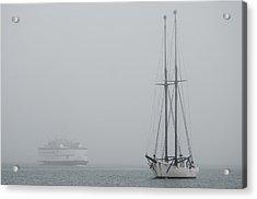 Into The Fog Acrylic Print by Steve Myrick