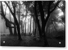 Into The Mystic Acrylic Print by Marco Oliveira
