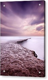 Into The Ocean Acrylic Print by Jorge Maia