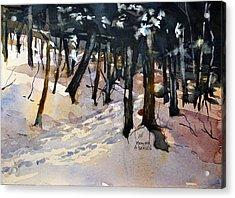 Into The Woods Acrylic Print by Spencer Meagher