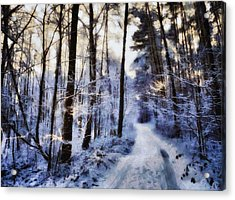 Inviting For A Sunday Walk Acrylic Print by Gun Legler