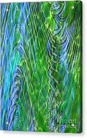 Iridescence Acrylic Print by Carol Groenen