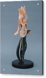 Iris #3 Acrylic Print by Leslie Dycke