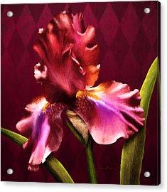 Iris I Acrylic Print by April Moen