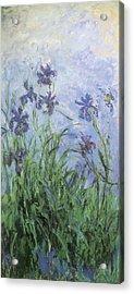 Irises Acrylic Print by Claude Monet