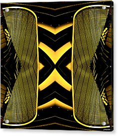 It Can Also Fly  Acrylic Print by Anders Hingel