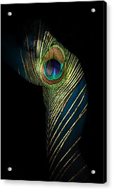 It Not The Time To Leave Acrylic Print by Mark Ashkenazi