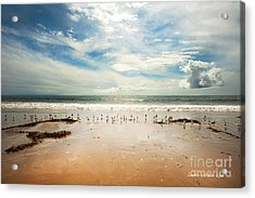 It Was A Sunny Day At The Beach From The Book My Ocean Acrylic Print by Artist and Photographer Laura Wrede
