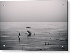 It Was Lonely There Acrylic Print by Laurie Search