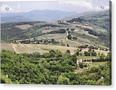 Italian Vineyards Acrylic Print by Nancy Ingersoll