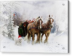A Christmas Wish Acrylic Print by Shanina Conway