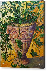 Ivy And Other Greens Acrylic Print by Paris Wyatt Llanso