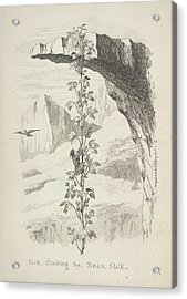 Jack Climbing The Bean Stalk Acrylic Print by British Library