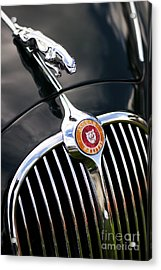 Jaguar 3.4 Litre Classic Car Acrylic Print by Tim Gainey