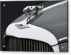 Jaguar Mk Ix Hood Acrylic Print by Susan Candelario