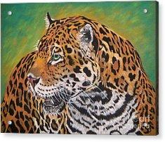 Jaguar Acrylic Print by Yvonne Johnstone