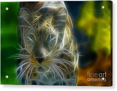 Jaguar208-fractal Acrylic Print by Gary Gingrich Galleries