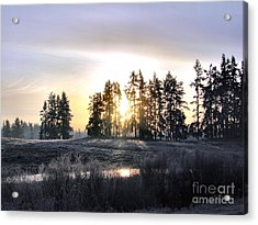 January Morning Acrylic Print by Rory Sagner