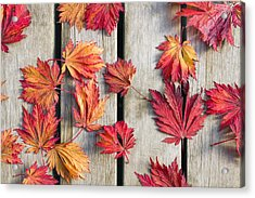 Japanese Maple Tree Leaves On Wood Deck Acrylic Print by David Gn