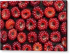 Japanese Wineberry Pattern Acrylic Print by Tim Gainey