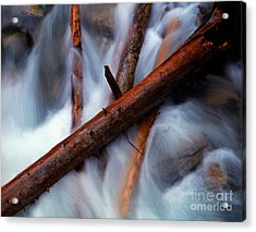 Jasper - Beauty Creek Logs Acrylic Print by Terry Elniski