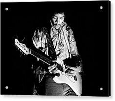 Jimi Hendrix Live 1967 Acrylic Print by Chris Walter