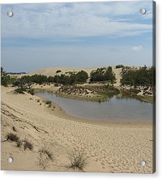 Jockey's Ridge 3 Acrylic Print by Cathy Lindsey