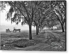 John Deer Tractor And The Avenue Of Oaks Acrylic Print by Scott Hansen
