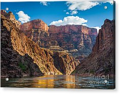 Journey Through The Grand Canyon Acrylic Print by Inge Johnsson