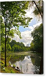 July Fourth Duck Pond With Goose Acrylic Print by Byron Varvarigos